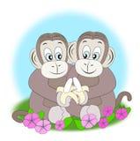 Amigos do macaco com bananas Imagens de Stock Royalty Free