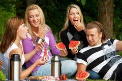 Amigos en comida campestre Imagen de archivo libre de regalías