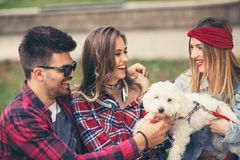 Amigos en el parque que se divierte con el perrito Imagen de archivo libre de regalías