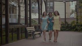 Amigos fêmeas de sorriso elegantes que andam na aleia do parque filme
