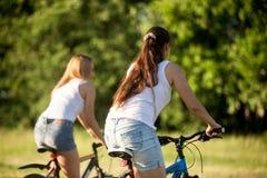 Amigos fêmeas novos que montam bicicletas Imagens de Stock Royalty Free