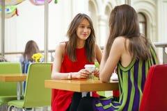 Amigos fêmeas que têm o almoço junto na alameda Imagem de Stock Royalty Free