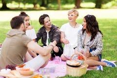 Amigos felices con las bebidas en la comida campestre del verano Imágenes de archivo libres de regalías