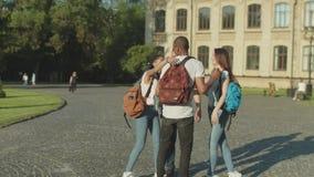 Amigos felices de la universidad que se encuentran en campus universitario almacen de video