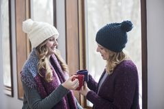 Amigos felices de las mujeres en casa en invierno Fotos de archivo