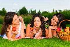 Amigos felices en comida campestre en parque Foto de archivo