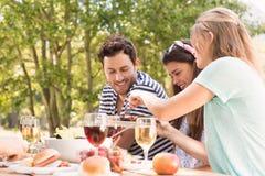 Amigos felices en el parque que almuerza Imagen de archivo