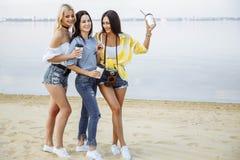 Amigos felices en la playa Imagenes de archivo