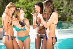 Amigos felices que gozan en la piscina Imagen de archivo
