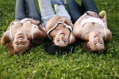 Amigos felices que ríen en la hierba Imagenes de archivo