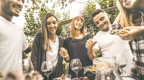 Amigos felices que se divierten que bebe el vino rojo que come en la fiesta de jardín Foto de archivo libre de regalías