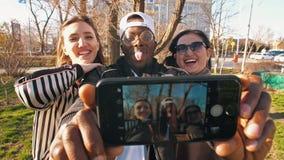 Amigos felices que sonríen en la cámara metrajes