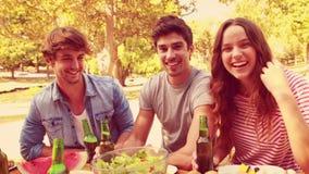 Amigos felices que tuestan junto durante almuerzo en el parque metrajes