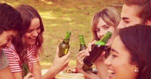 Amigos felices que tuestan junto durante almuerzo en el parque almacen de video