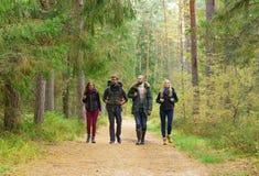 Amigos felizes novos que andam na floresta e que apreciam um bom outono imagem de stock