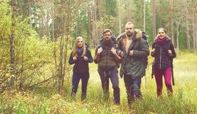 Amigos felizes novos que andam na floresta e que apreciam um bom outono foto de stock