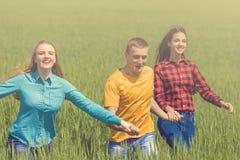 Amigos felizes novos que correm no campo de trigo verde Foto de Stock
