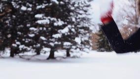 Amigos felizes que jogam com neve no inverno video estoque
