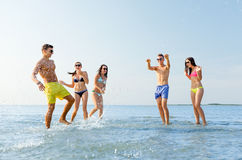 Amigos felizes que têm o divertimento na praia do verão Imagem de Stock