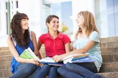 Amigos femeninos adolescentes que se sientan en pasos de progresión de la universidad Fotografía de archivo