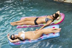Amigos femeninos atractivos en la piscina en un flotador imágenes de archivo libres de regalías