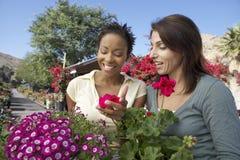 Amigos femeninos en el jard?n bot?nico Fotos de archivo libres de regalías