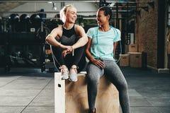 Amigos femeninos jovenes aptos que ríen junto después de un entrenamiento del gimnasio foto de archivo