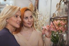 Amigos femeninos que hacen compras en casa tienda de las mercanc?as imagen de archivo