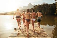 Amigos jovenes alrededor a saltar en el lago de un embarcadero fotografía de archivo