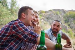 Amigos jovenes felices que tienen comida campestre en el parque Son todos felices, divirtiéndose, sonriendo Adultos jovenes Comid Imagen de archivo