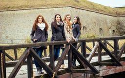 Amigos Loving Retrato de quatro melhores amigos Imagens de Stock
