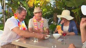Amigos maduros durante un aperitivo almacen de metraje de vídeo