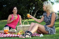 Amigos magníficos de las mujeres en la comida campestre Fotografía de archivo libre de regalías