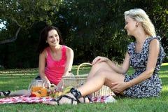 Amigos magníficos de las mujeres en la comida campestre Foto de archivo libre de regalías