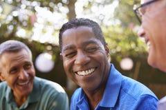 Amigos masculinos maduros que socializam no quintal junto foto de stock royalty free