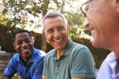 Amigos masculinos maduros que socializam no quintal junto fotos de stock royalty free