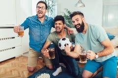 Amigos masculinos que olham esportes na tevê e que bebem a cerveja fotos de stock royalty free