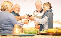 Amigos mayores felices que tuestan con el vino tinto en la cena de la barbacoa en terraza - gente madura que cena y que anima jun imagenes de archivo