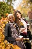 Amigos multirraciales jovenes que caminan alrededor de parque del otoño Foto de archivo libre de regalías