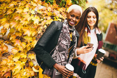 Amigos multirraciales que caminan alrededor de parque del otoño Fotos de archivo