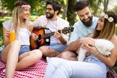 Amigos novos felizes que t?m o piquenique no parque imagem de stock royalty free