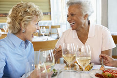 Amigos que almuerzan en un restaurante Imagen de archivo libre de regalías
