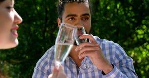 Amigos que beben el champán durante almuerzo metrajes