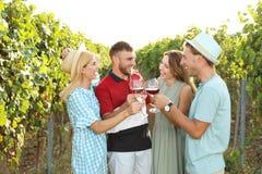 Amigos que beben el vino y que se divierten foto de archivo