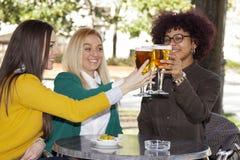 Amigos que beben la cerveza Foto de archivo libre de regalías