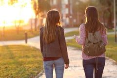 Amigos que caminan junto en la puesta del sol Imágenes de archivo libres de regalías