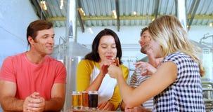 Amigos que comen el vidrio de cerveza en la fábrica 4k de la cervecería almacen de video