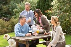 Amigos que disfrutan de la bebida en jardín del Pub Imagen de archivo