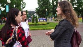 Amigos que hablan la situación en el parque Charla de las mujeres almacen de video
