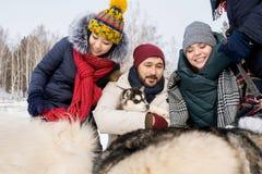 Amigos que juegan con Husky Dogs Imagen de archivo